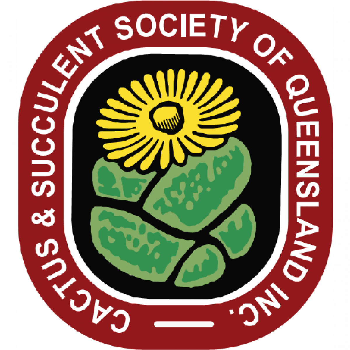 Cactus & Succulent Society of Queenland Incorporated